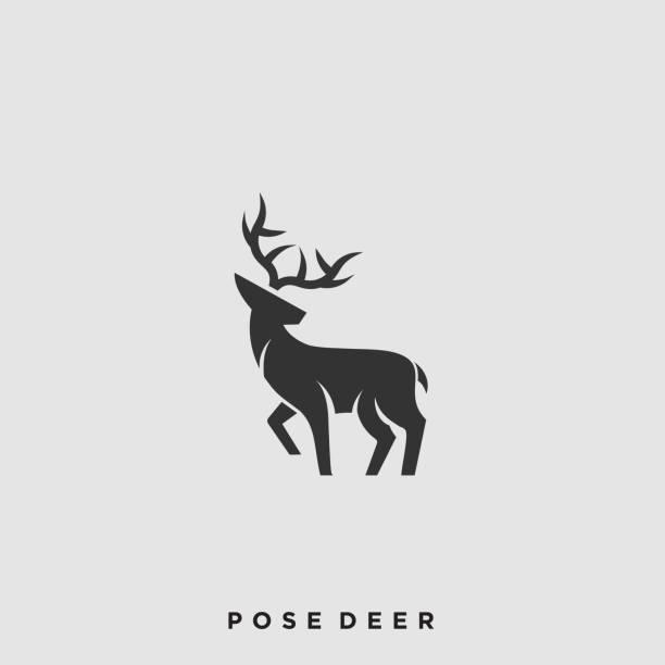 ilustraciones, imágenes clip art, dibujos animados e iconos de stock de plantilla vectorial de ilustración de pose de ciervo - hueva