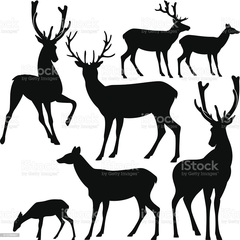 Ensemble de la silhouette de cerf - Illustration vectorielle