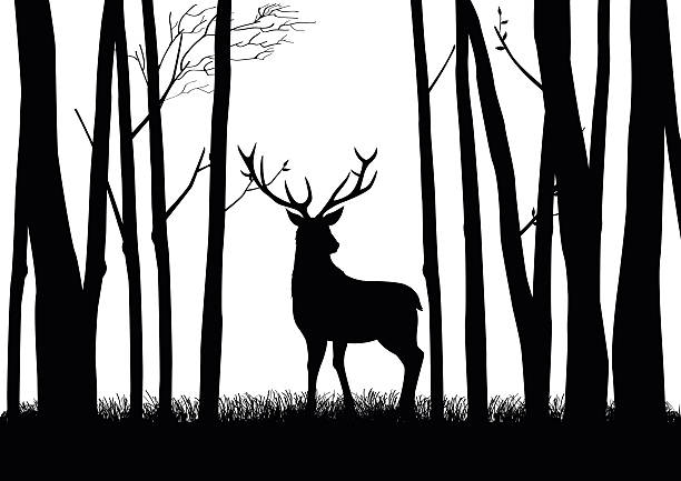 stockillustraties, clipart, cartoons en iconen met deer silhouette - roofdieren
