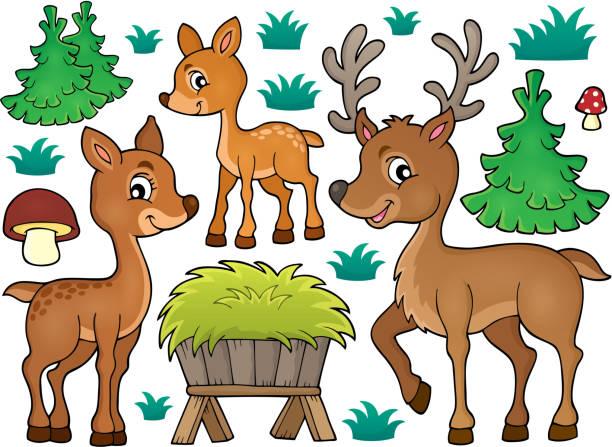 Best Deer Feeder Illustrations, Royalty-Free Vector Graphics