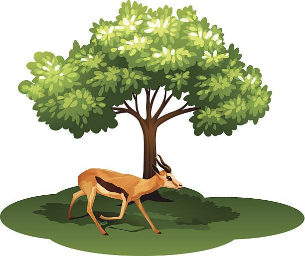 Under Tree Shade Illustrations, Royalty-Free Vector ...