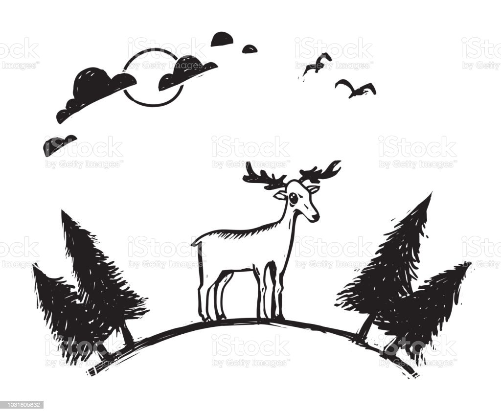 Vector Line Art Animals : Royalty free drawing of woodland animals clip art vector images