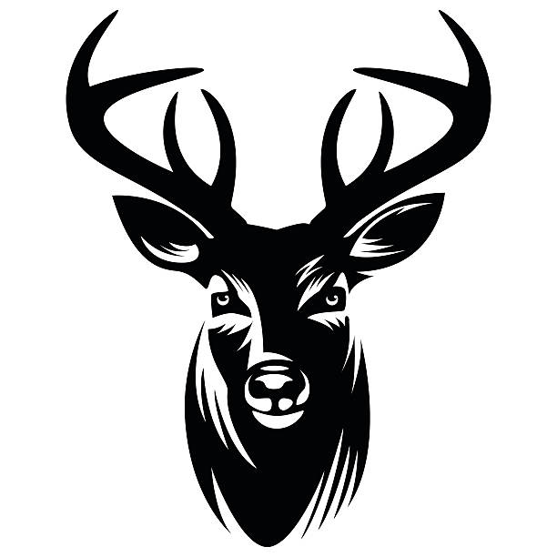 deer vector illustration - vector - deer antlers stock illustrations, clip art, cartoons, & icons