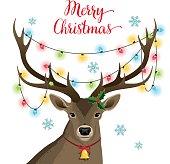Deer with Christmas lights.