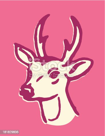 Deer with Small Antlers