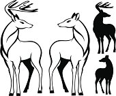 Deers illustration in black and white
