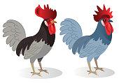 Vector Delaware Blue Hen