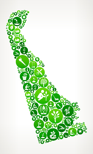 Delaware Garden and Gardening Vector Icon Pattern