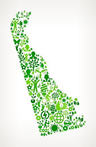 Delaware State Environmental Conservation and Nature interface icon Pattern
