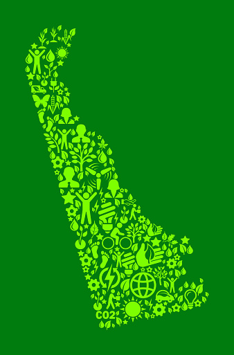Delaware State On Green Environmental Conservation and Nature Icon Pattern