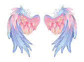 Artistically drawn angel wings, delicate pink and blue on white background. Angelic wings.