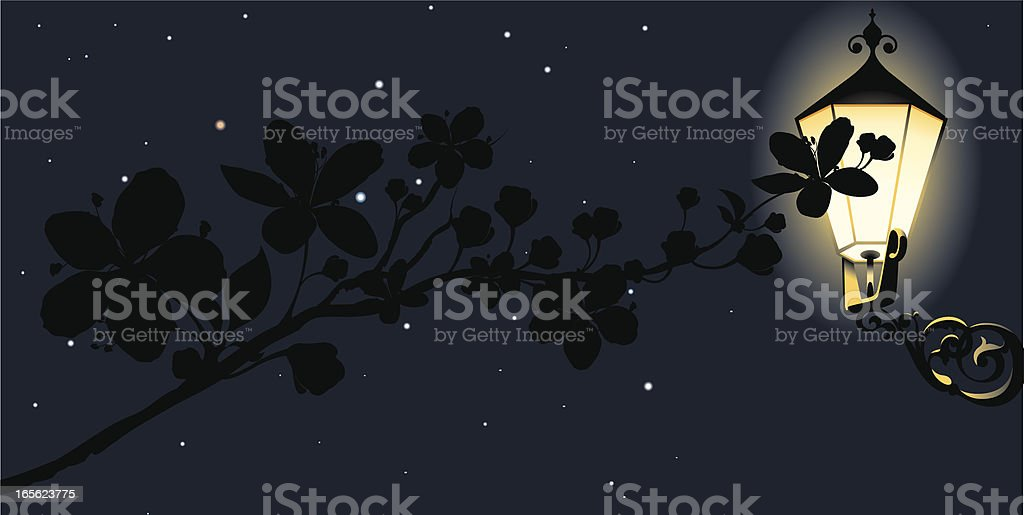 Delicate branch abloom at night royalty-free stock vector art