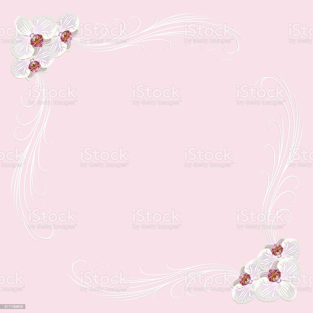 Delicato Telaio Con Fiori Su Sfondo Rosa Orchidea Immagini