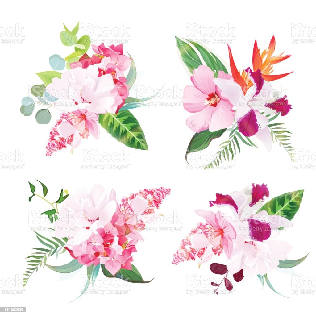 Delicate Tropical Floral Bouquets Of Hibiscus Medinilla Orchid Stock