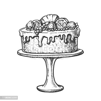 Delicious Cake Decorated With Fruits Ink Vector