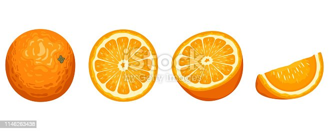 Beautiful vector design illustration of delicious orange fruit isolated on white background