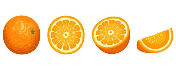ilustrações de stock, clip art, desenhos animados e ícones de delicious orange fruit vector design illustration isolated on white background - orange