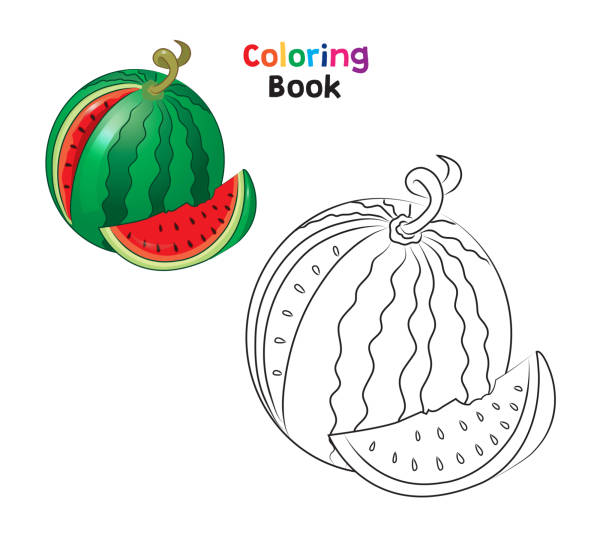 226 Watermelon Coloring Page Illustrations Clip Art Istock