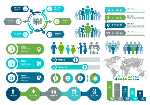 demographics infographic elements - infographic stock illustrations