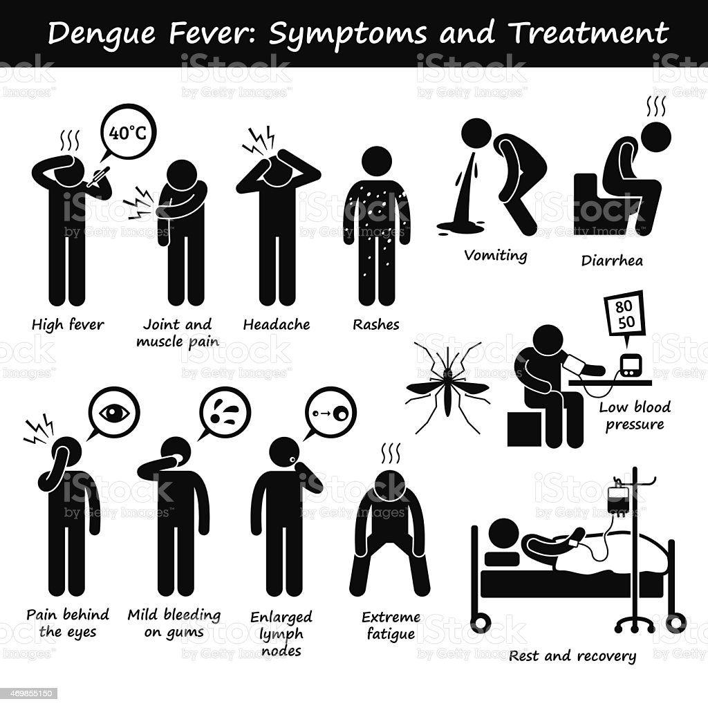 Dengue Fever Symptoms and Treatment Aedes Mosquito Pictogram vector art illustration