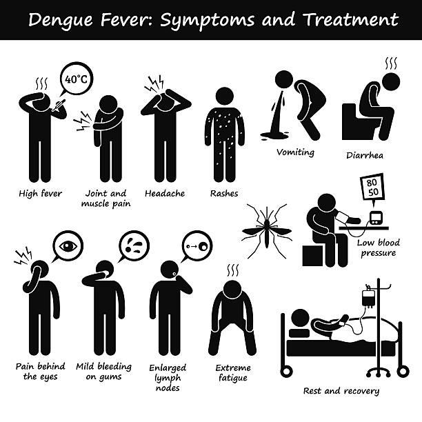 illustrazioni stock, clip art, cartoni animati e icone di tendenza di dengue sintomi e trattamento zanzara del genere aedes pittogramma - irritazione