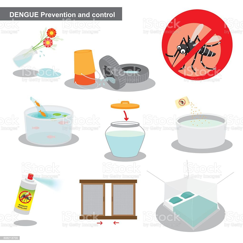 Dengue prevention and control vector art illustration