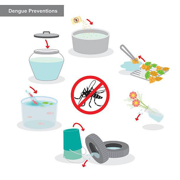 illustrazioni stock, clip art, cartoni animati e icone di tendenza di dengue prevenzione - zanzare