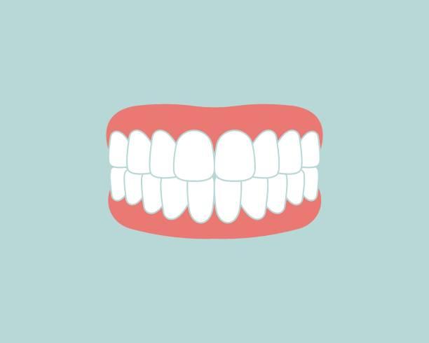 bildbanksillustrationer, clip art samt tecknat material och ikoner med dental clinic ikon logo vektor illustration design - emalj