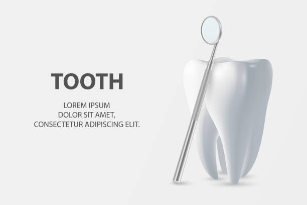 Dental Inspection Banner, Plackard. Vector 3d Realistic Dentist Mirror for Teeth with Tooth Icon Closeup on White Background. Medical Dentist Tool. Design Template. Dental Health Concept Dental Inspection Banner, Plackard. Vector 3d Realistic Dentist Mirror for Teeth with Tooth Icon Closeup on White Background. Medical Dentist Tool. Design Template. Dental Health Concept. dentist stock illustrations