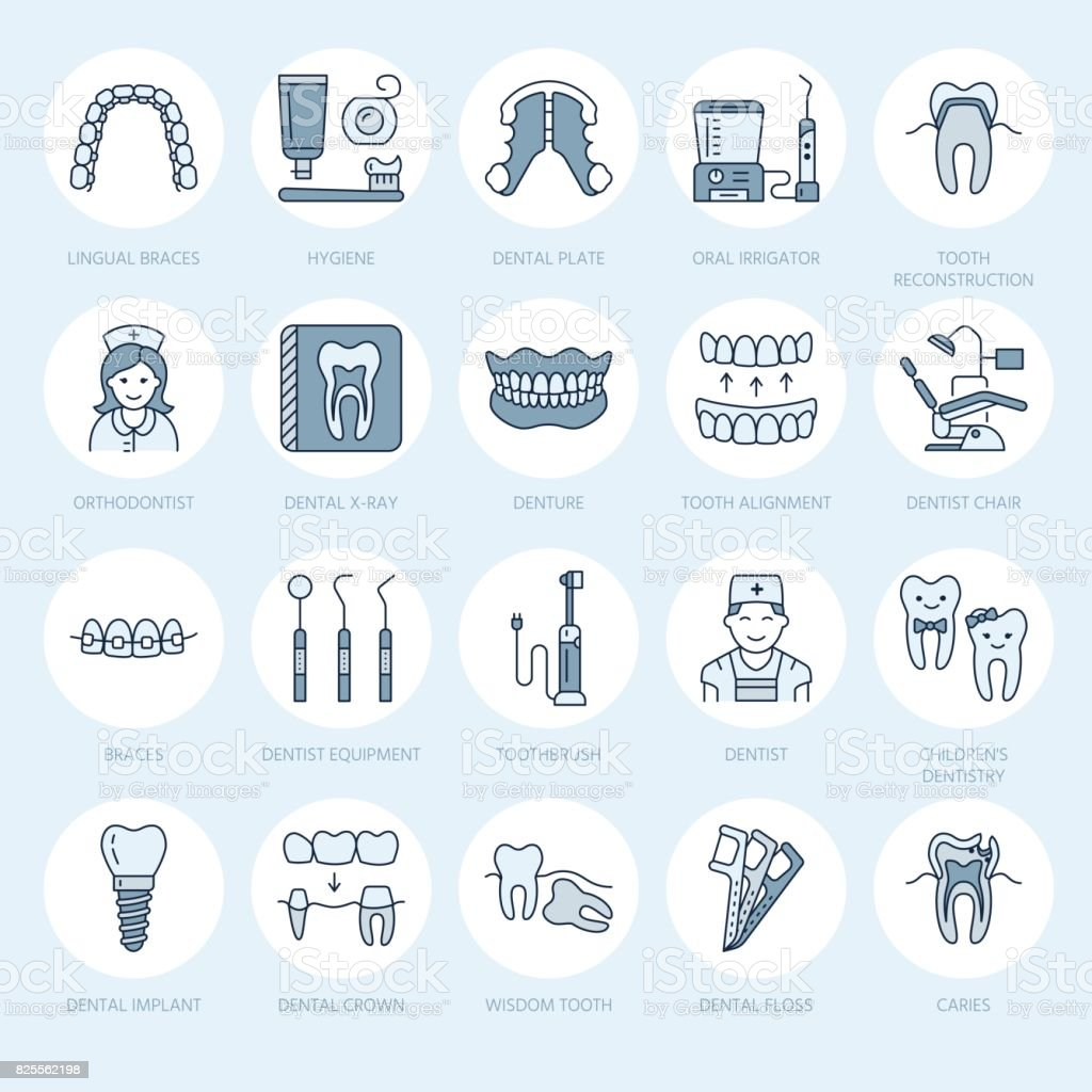 Dentist, orthodontics line icons. Dental care equipment, braces, tooth prosthesis, veneers, floss, caries treatment and other medical elements. Health care thin linear signs for dentistry clinic vector art illustration