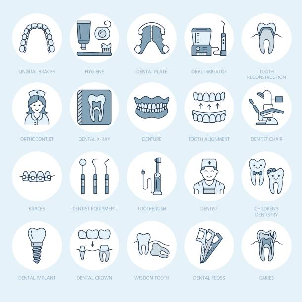 dentist, orthodontics line icons. dental care equipment, braces, tooth prosthesis, veneers, floss, caries treatment and other medical elements. health care thin linear signs for dentistry clinic - orthodontist stock illustrations, clip art, cartoons, & icons