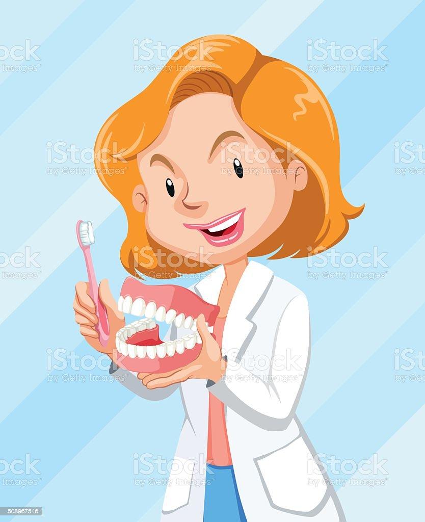 Dentist showing how  brush teeth vector art illustration