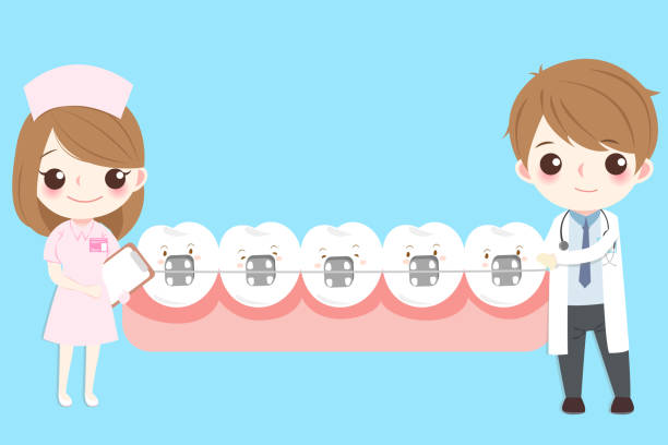 illustrations, cliparts, dessins animés et icônes de dentiste avec dent - orthodontiste