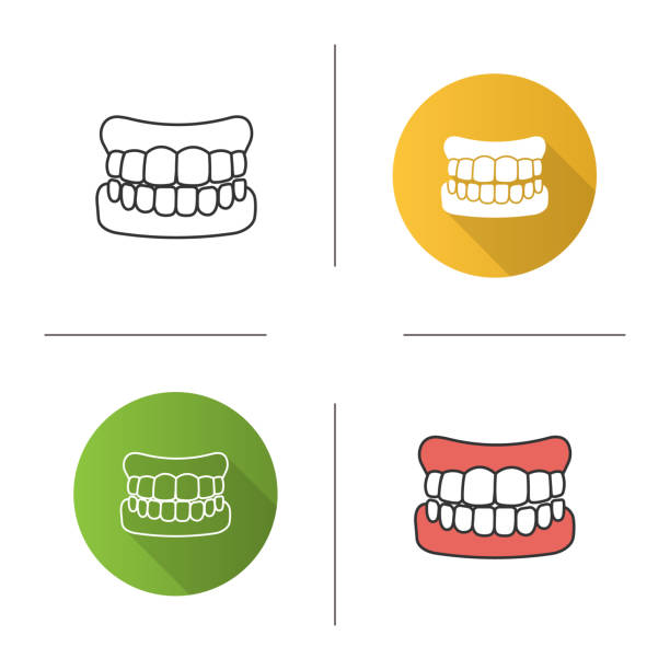 Dentures icon Dentures flat design, linear and color icons set human jaw bone stock illustrations