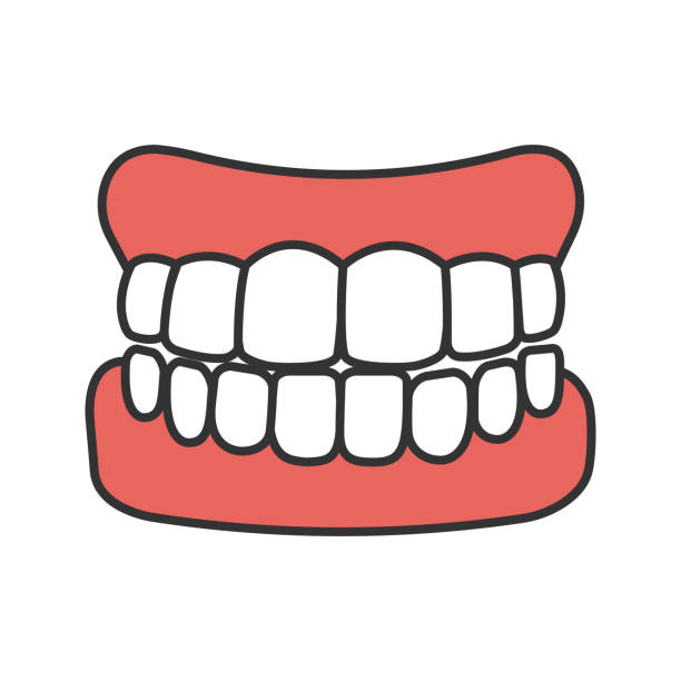 Dentures icon vector art illustration