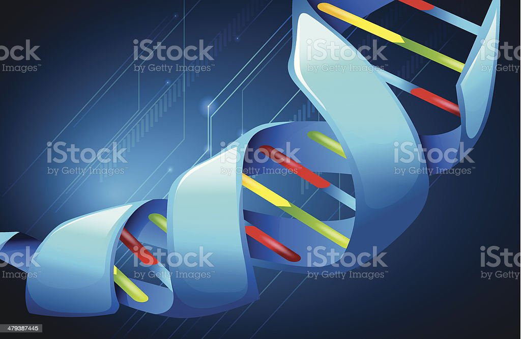 Deoxyribonucleic acid royalty-free stock vector art