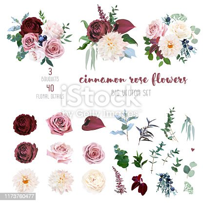 Desert cinnamon, brown, dusty pink and creamy roses, dahlia, burgundy anthurium flowers, juniper, eucalyptus, greenery, ranunculus, marsala astilbe big vector collection. Isolated and editable