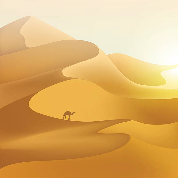 砂漠の砂丘の景観。 - 砂漠点のイラスト素材/クリップアート素材/マンガ素材/アイコン素材