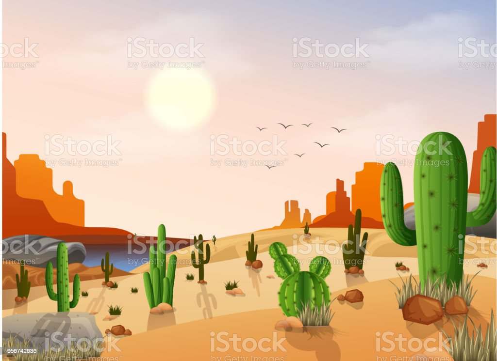 Desert landscape with cactus on the sunset background vector art illustration