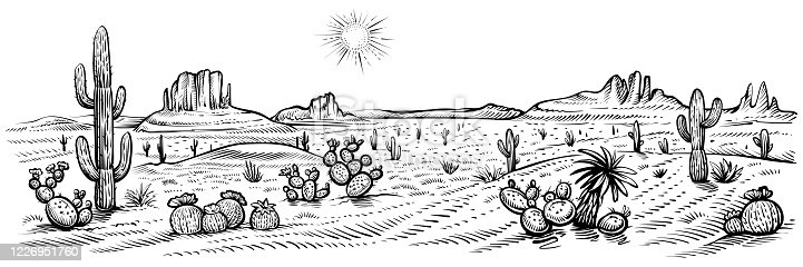 istock Desert panorama landscape, vector illustration. Arizona line sketch with cactuses and rocks. 1226951760