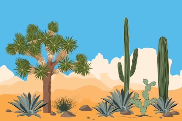 Desert pattern with joshua trees, opuntia, agave, and saguaro cacti. Mountains background. vector art illustration