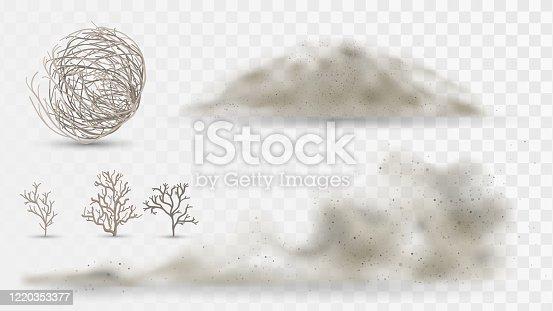 Plantas del desierto y polvo