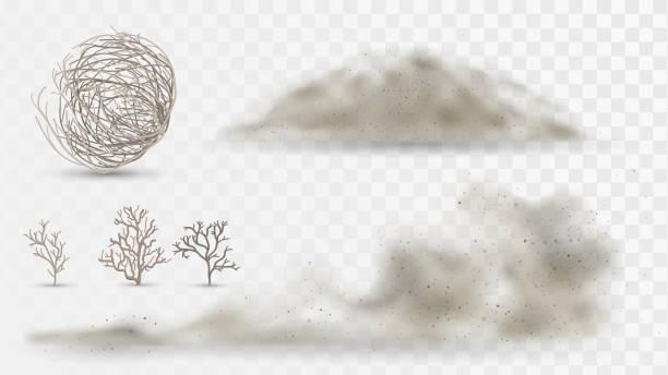 пустынные растения и пыль - white background stock illustrations