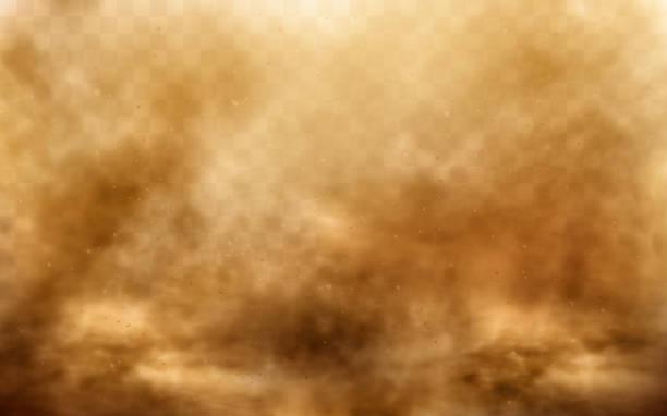 ilustrações de stock, clip art, desenhos animados e ícones de desert sandstorm, brown dusty cloud on transparent - storm effects