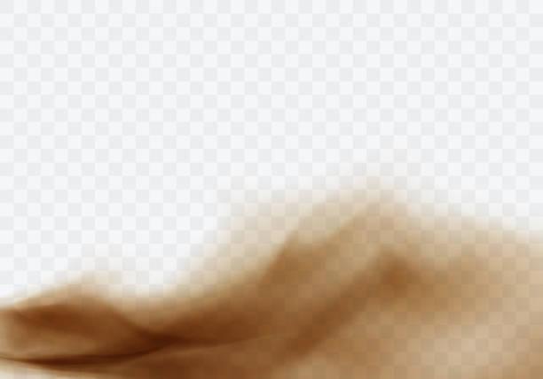 wüstensandsturm, braune staubige wolke auf transparent - wüste stock-grafiken, -clipart, -cartoons und -symbole