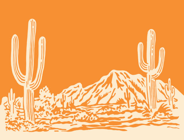 Desert Scene vector art illustration