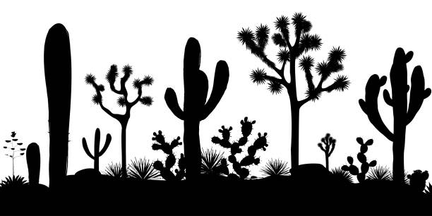 desert seamless pattern with silhouettes of joshua trees, opuntia, and saguaro cacti. - desert stock illustrations