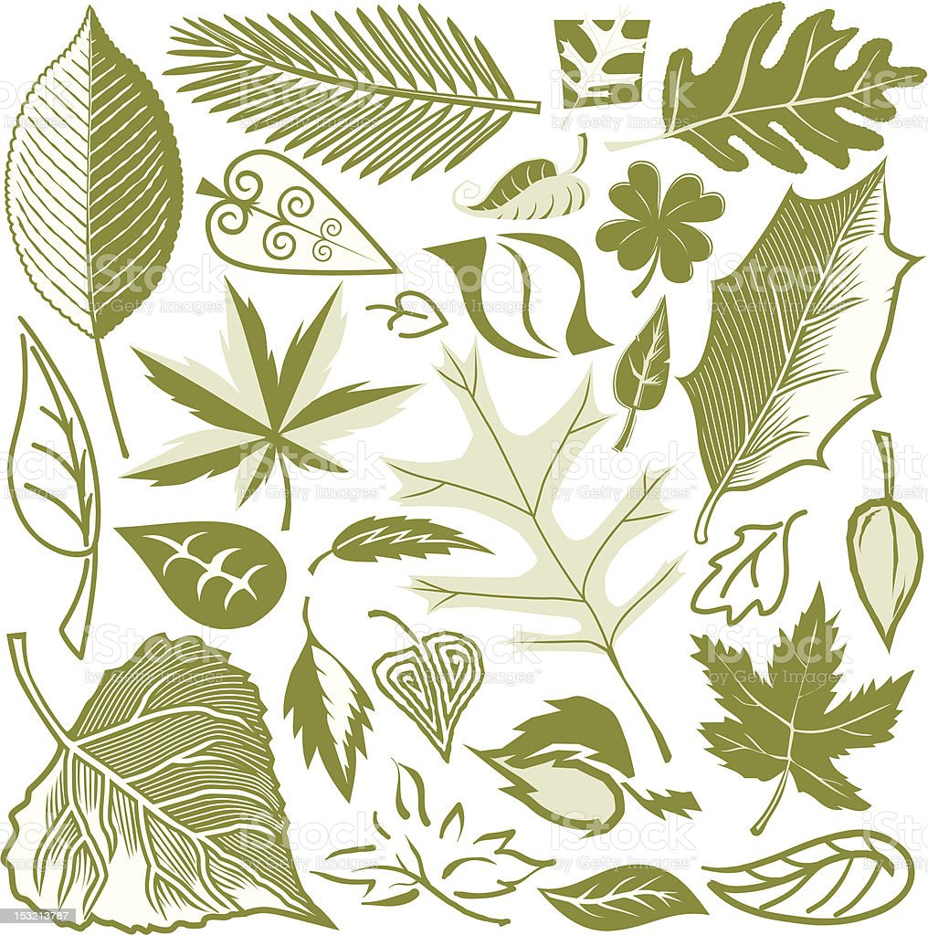 Design Elements - Leaves royalty-free stock vector art