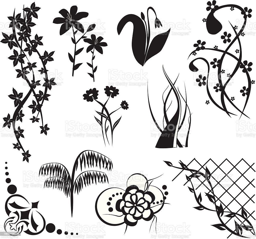 design elements with flora royalty-free design elements with flora stock vector art & more images of angle