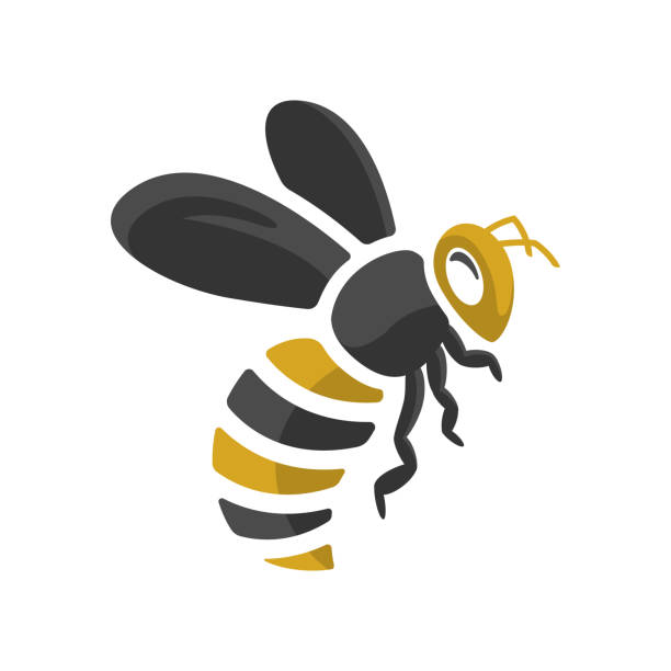 design of a bee with simple flat style vector Vector design of a bee with simple flat style vector queen bee stock illustrations